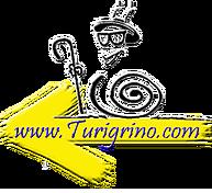 Turigrino